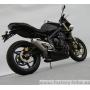 ESCAPE ZARD STREET TRIPLE 675